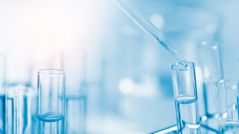 Curso Intensivo de Genética y Biología Molecular 2019